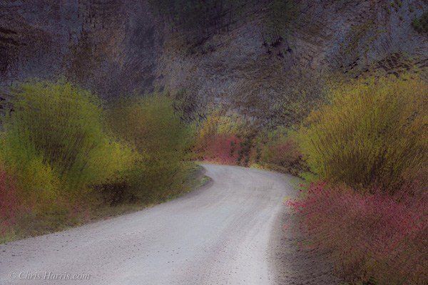 impressionistic view of a road