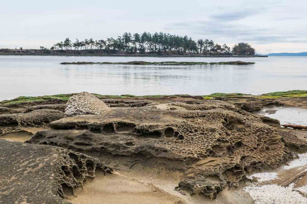 Gabriola Island photography workshop with Chris Harris.
